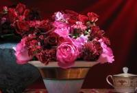 Цветы живые - фото 0027