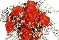 Цветы живые - фото 0070