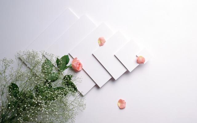 Цветы живые - фото 0077