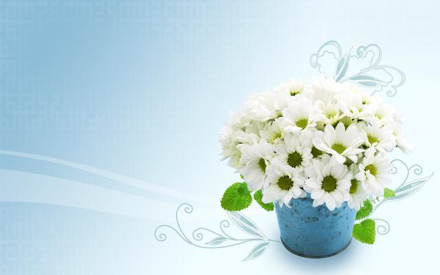 Цветы - фото 0108