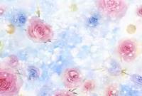 Цветы - фото 0119