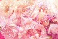 Цветы - фото 0120