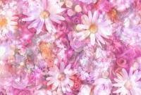 Цветы - фото 0122