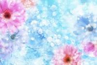 Цветы - фото 0123