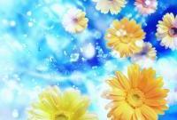 Цветы - фото 0127
