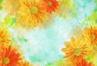 Цветы - фото 0133