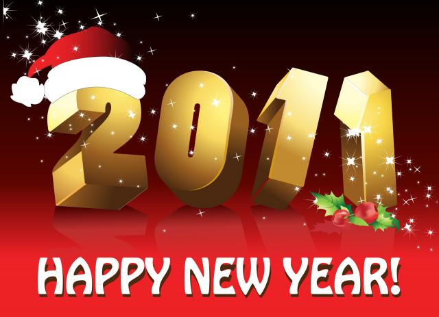 Новый год 2011 - фото 0139