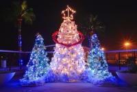 Новый год и Рождество - фото 0154