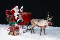 Новый год и Рождество - фото 0188