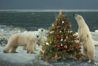 Новый год и Рождество - фото 0206