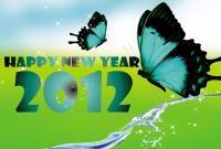 Новый год 2012 - фото 0408