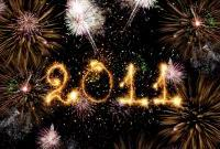 Новый год 2011 - фото 0452