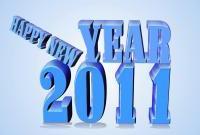 Новый год 2011 - фото 0455