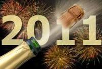 Новый год 2011 - фото 0461