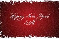 Новый год 2011 - фото 0462