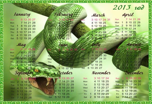 Новый год 2013 - фото 0562