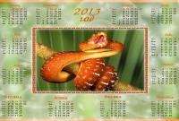 Новый год 2013 - фото 0564