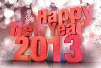 Новый год 2013 - фото 0568