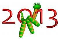Новый год 2013 - фото 0586