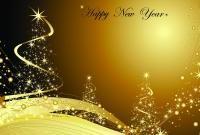 Новый год 2013 - фото 0609