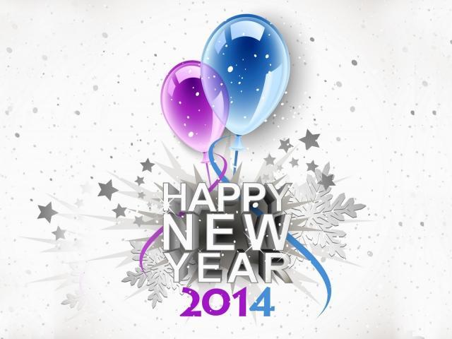 Новый год 2014 - фото 0649