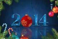 Новый год 2014 - фото 0651