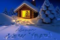 Новый год 2014 - фото 0652