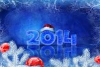 Новый год 2014 - фото 0658