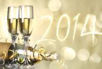 Новый год 2014 - фото 0660