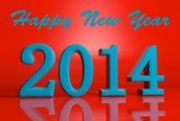 Новый год 2014 - фото 0662