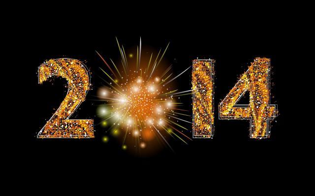 Новый год 2014 - фото 0666