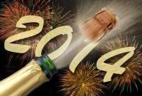 Новый год 2014 - фото 0668