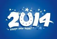 Новый год 2014 - фото 0670