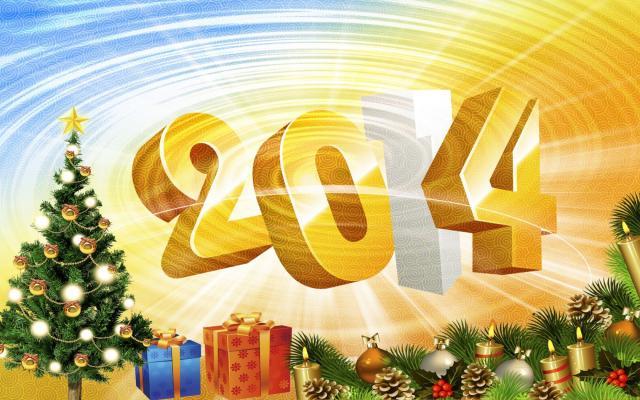 Новый год 2014 - фото 0671