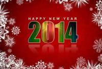 Новый год 2014 - фото 0673