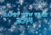 Новый год 2014 - фото 0678