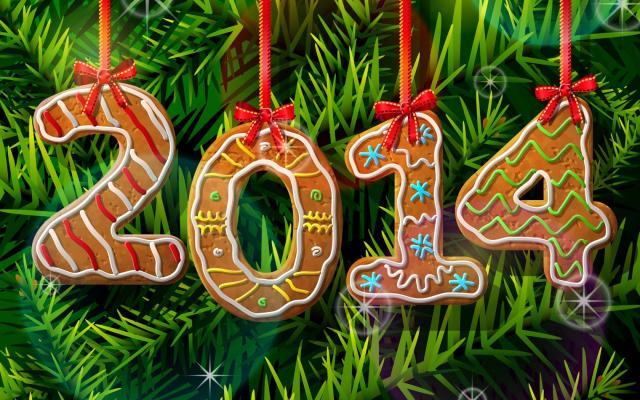 Новый год 2014 - фото 0679