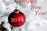 Новый год 2014 - фото 0697