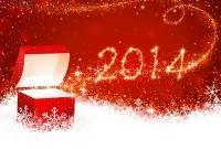 Новый год 2014 - фото 0714