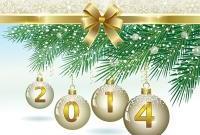 Новый год 2014 - фото 0719