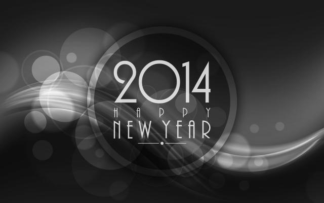 Новый год 2014 - фото 0737
