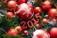 Новый год 2015 - фото 0761