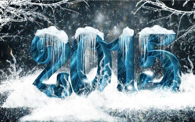 Новый год 2015 - фото 0763