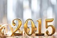 Новый год 2015 - фото 0765