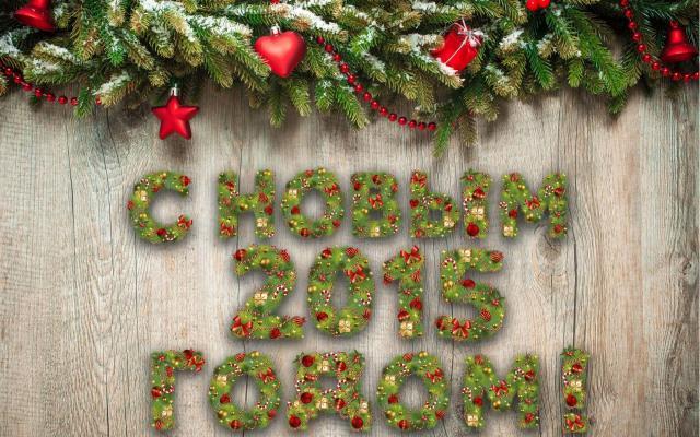 Новый год 2015 - фото 0766