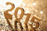 Новый год 2015 - фото 0775