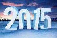 Новый год 2015 - фото 0778