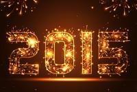 Новый год 2015 - фото 0790