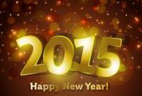 Новый год 2015 - фото 0791