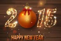 Новый год 2015 - фото 0792